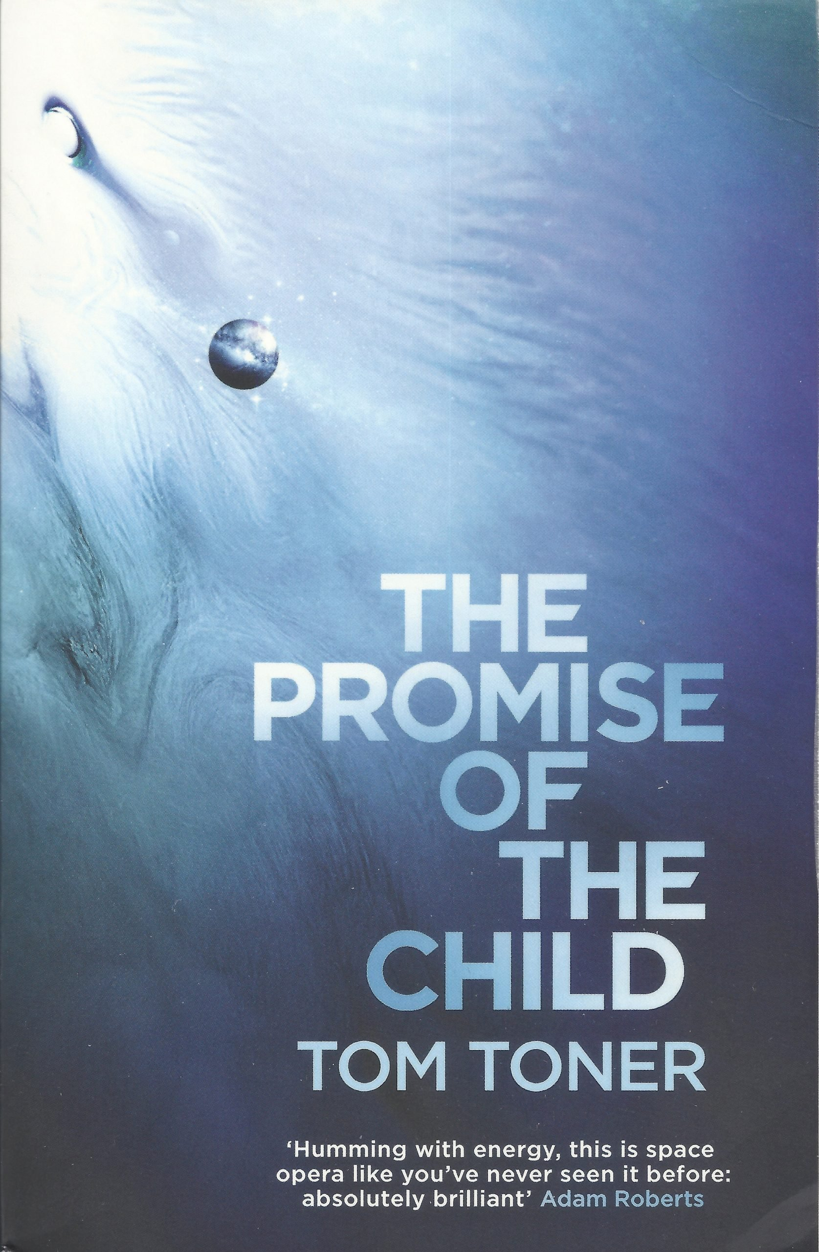 The Promise of the Child by Tom Toner